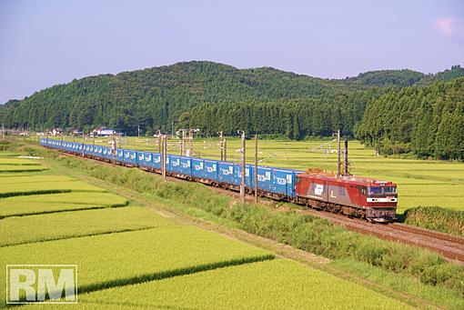 08_07_30_sirakuta.JPG