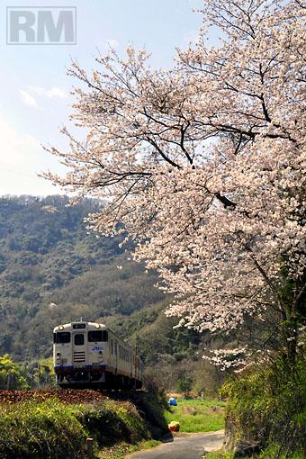 100406_tsuyama.jpg
