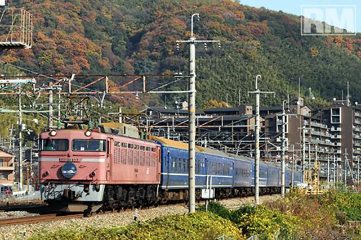 ONO_4875.jpg