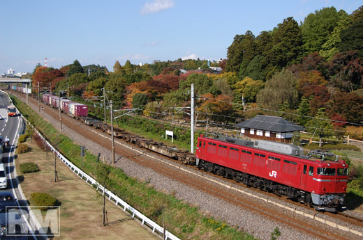 2005.11.12-50mm.jpg