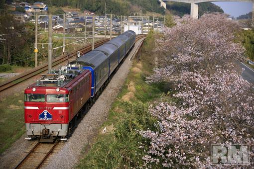 kitsuki-01.jpg