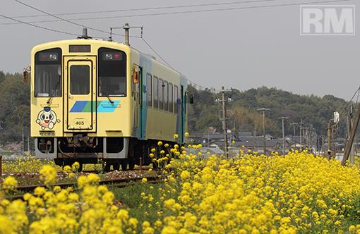 ota_130326_heichiku.jpg
