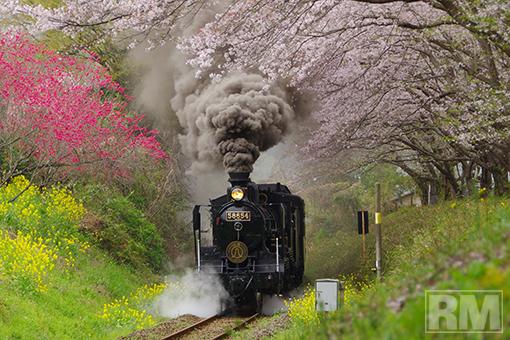 takashi-harada20130401.jpg