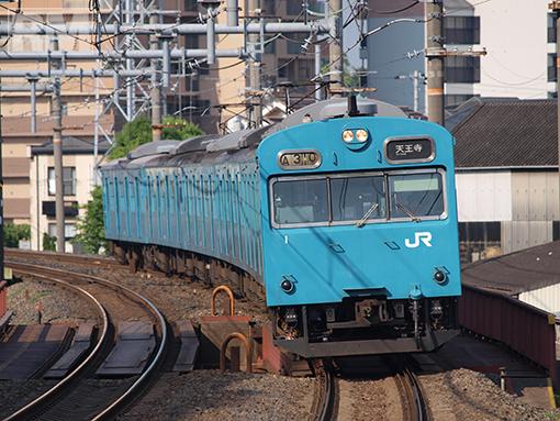 P6042351.jpg