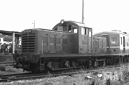 DD501.jpg