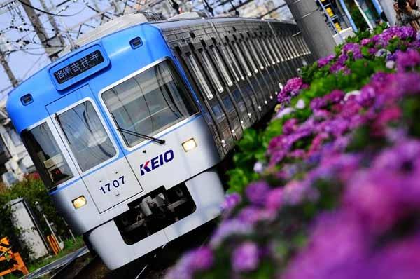http://rail.hobidas.com/rm-now2011~/20150616172259-4c4dcc4c94f2d949995c77203d7f28d90331f523.jpg
