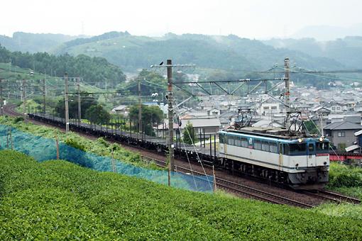 2008_08_23_hayakawa_nobuhisa.jpg