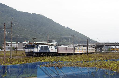 2008_10_07_sakai_kenichiro.jpg