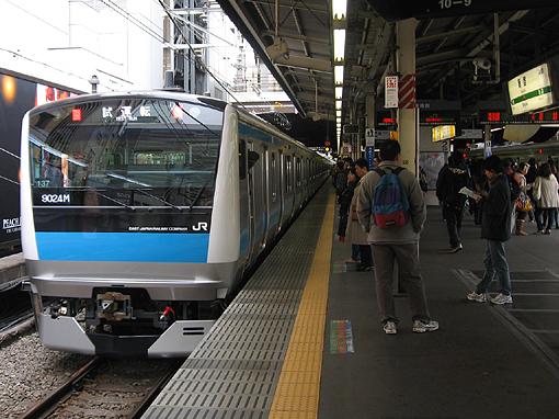 2008_11_11_shibata_togo4.jpg