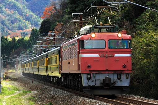 2008_12_06_hirose_hikaru001.jpg