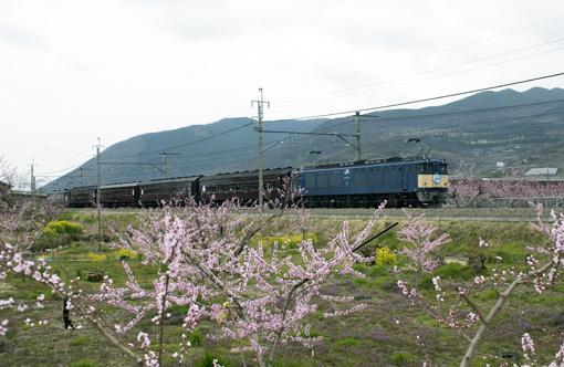 2009_04_05_sakai_kenichiro004.jpg