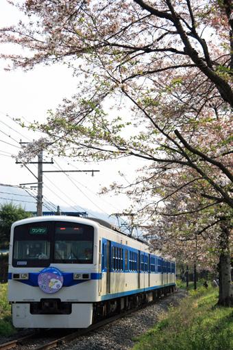 2009_04_12_miyagawa_masaki002.jpg