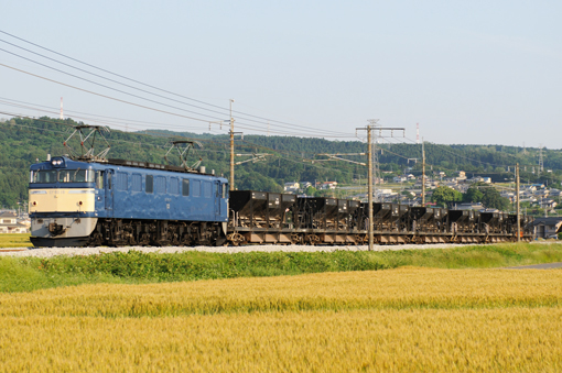 2009_05_26_sawano_tadashi001.jpg