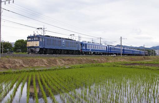 2009_06_21_sakai_kenichiro001.jpg