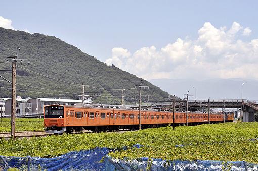 2010_07_25_sakai_kenichiro001.jpg