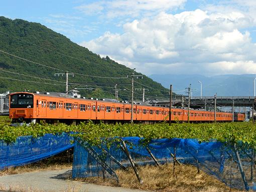 2010_09_26_hayashi_koki001.jpg