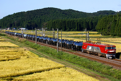 2010_09_26_kikuchi_ryo001.jpg
