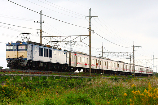 2010_10_26_watanuki_katsuya001.jpg