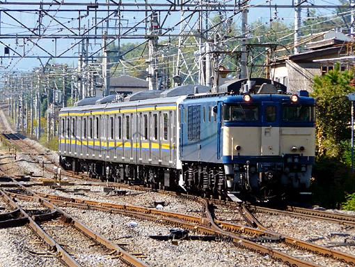 2010_11_05_tamaki_yuichi001.jpg