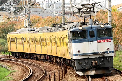 2010_11_14_nagasawa_yuki001.jpg