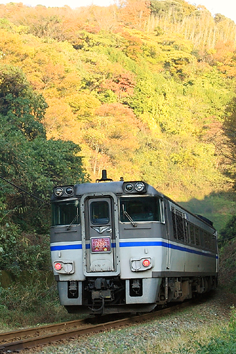 2010_11_20_hattori_hiromi001.jpg