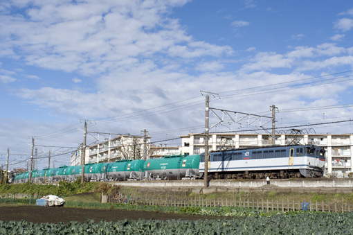 2010_11_23_sakai_kenichiro001.jpg