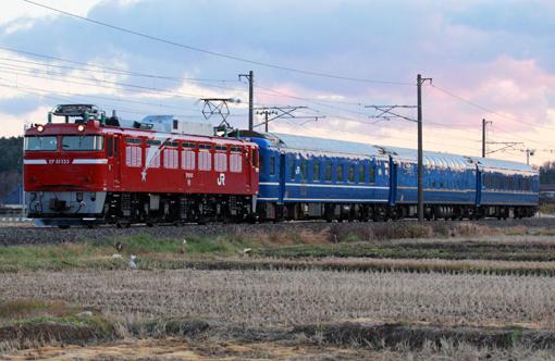 2010_12_08_hasegawa_kodai001.jpg