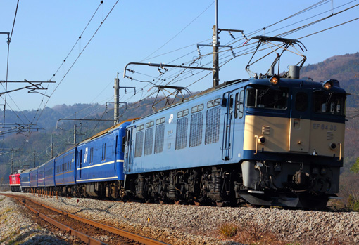 2010_12_11_hasegawa_kodai001.jpg