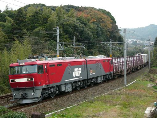 2010_12_11_nakatsukasa_sakura001.jpg