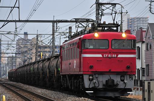 2010_12_16_nakata_seiga001.jpg