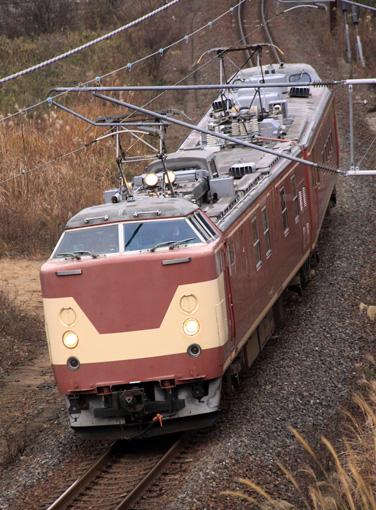 2010_12_20_fukui_kento001.jpg
