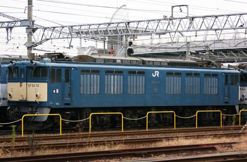 2010_12_21_kodama_naohisa001.jpg