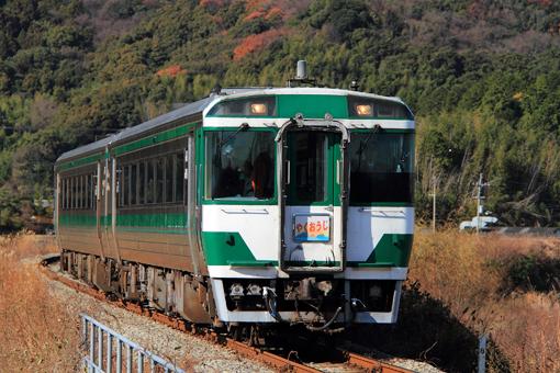 2011_01_01_sugimoto_noritaka001.jpg