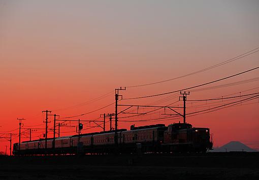 2011_02_13_kawano_kenichi002.jpg
