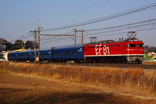 2011_02_21_hasegawa_kota001.jpg