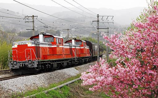 2011_05_03_kawano_kenichi001.jpg