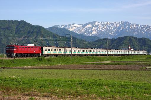 2011_05_24_hasegawa_koudai001.jpg