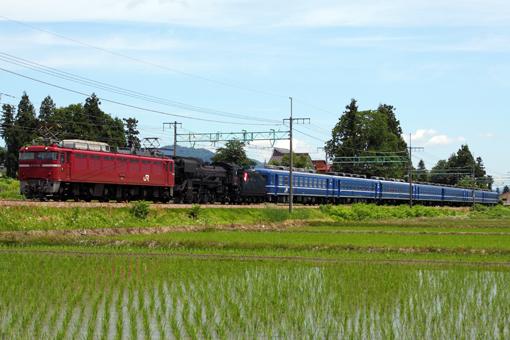2011_06_15_hasegawa_kodai001.jpg