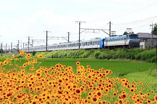 2011_06_24_otani_masahiro001.jpg