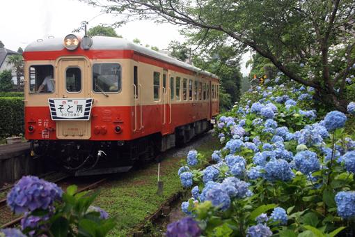 2011_06_26_ebie_kazushi001.jpg