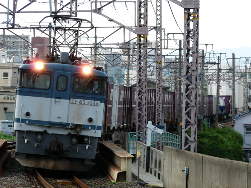 2011_08_02_hashi_naoki001.jpg
