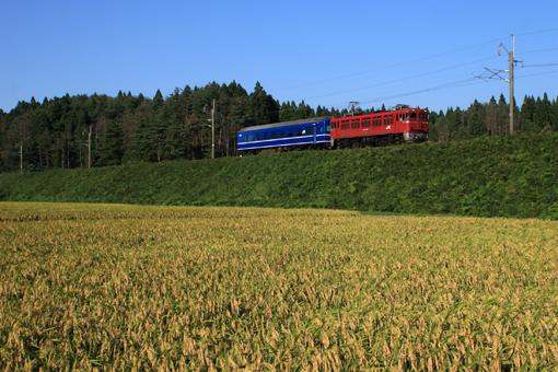 2011_09_28_mitsukura_hiroshi001.jpg