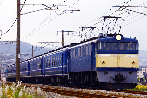 2011_10_19_mochizuki_rei001.jpg