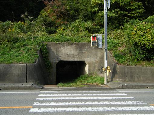2011_10_22_miyajima_masayuki004.jpg