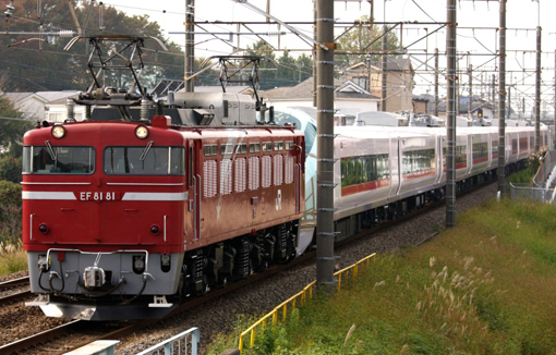 2011_11_15_hodumi_ryosuke001.jpg
