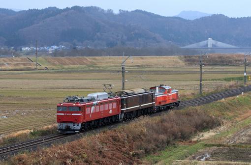 2011_11_24_mitsukura_hiroshi001.jpg
