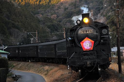 2012_01_08_hayakawa_kazushige001.jpg