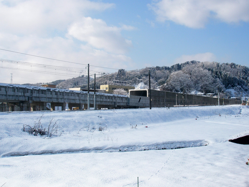 2012_01_14_miyajima_masayuki001.jpg
