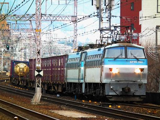 2012_01_15_nakatsukasa_sakura001.jpg