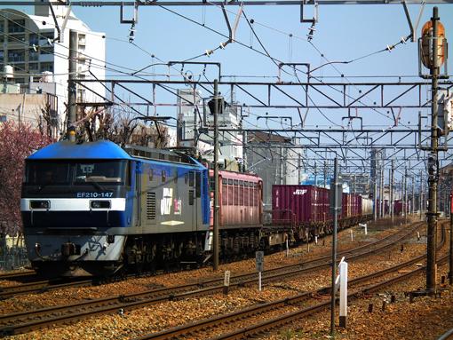 2012_04_08_nakatsukasa_sakura001.jpg